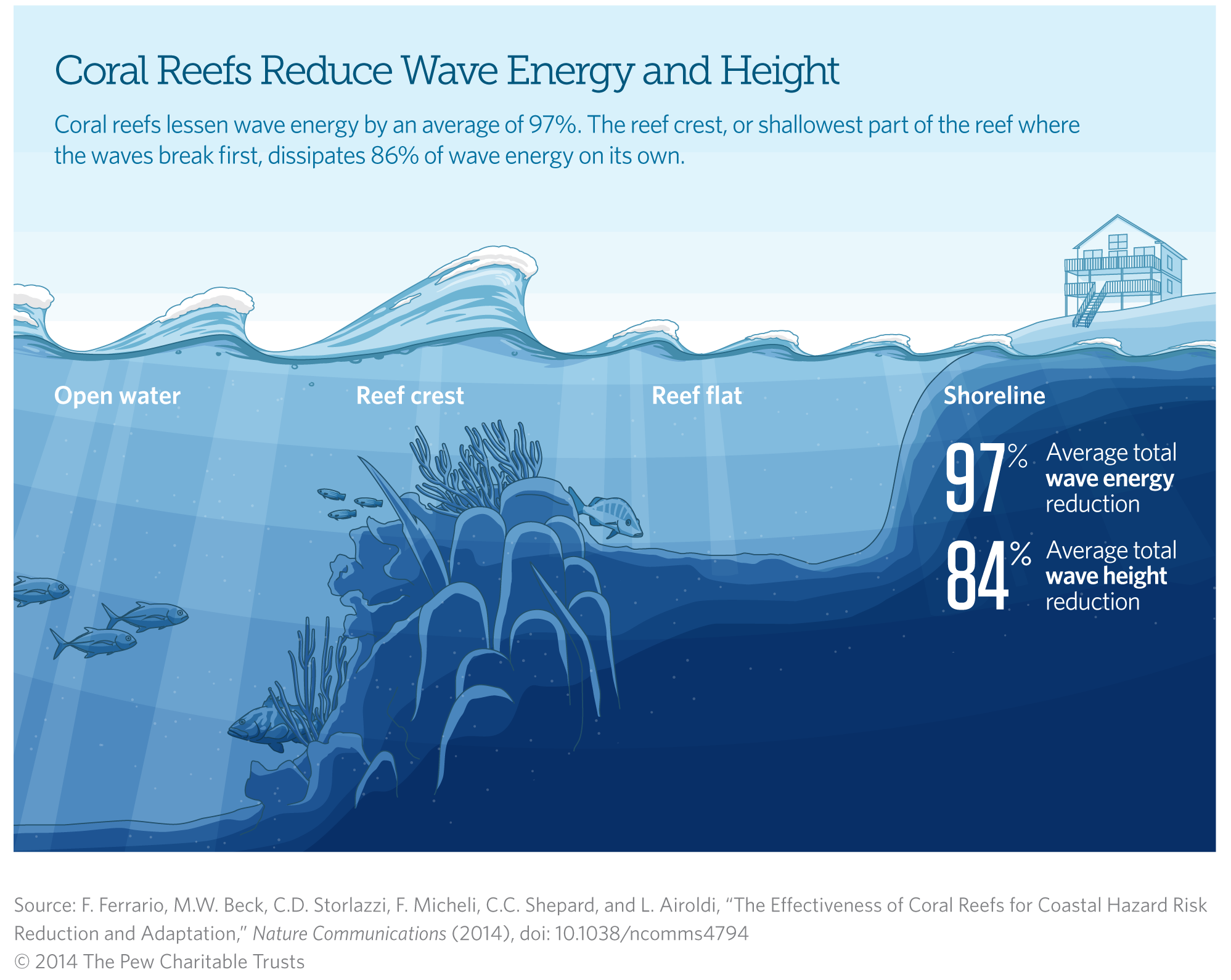 Coral Reefs Reduce Wave Energy and Height