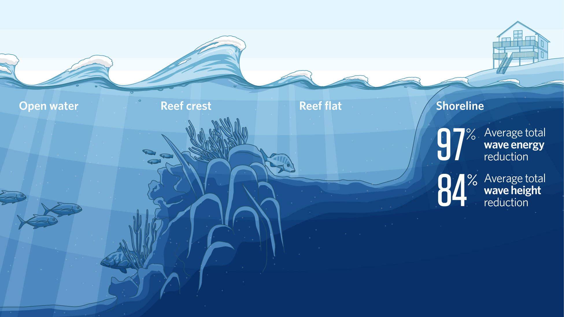 benefits of artificial reefs essay Essay on the benefits of artificial intelligence since the inception of scientific knowledge, as it is recognized today, the scientists have been making efforts to invent machinery which would make the regular and tedious jobs, a bit less tiresome mundane jobs like watering fields for crops .