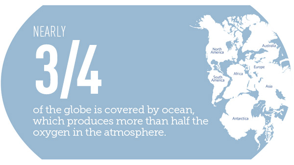 Nearly three-fourths of the globe is covered by ocean.