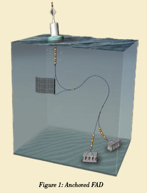 Fish aggregating devices fads and tuna impacts and for Fish aggregating device