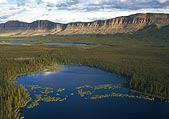 Boreal Forest water, credit: D. Langhorst, Ducks Unlimited