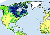 Map: global surface water, credit: Global Forest Watch Canada