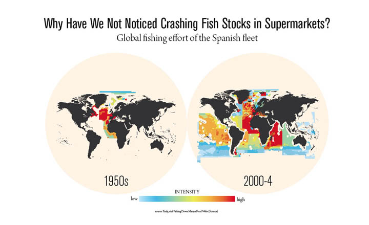 Why Have We Not Noticed Crashing Fish Stocks in Supermarkets?