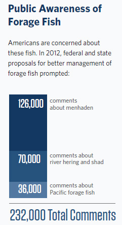 Public awareness of forage fish