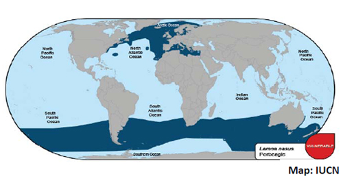 Porbeagle Shark Geographic Distribution