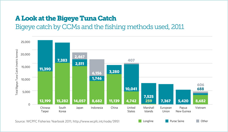 A Look at the Bigeye Tuna Catch