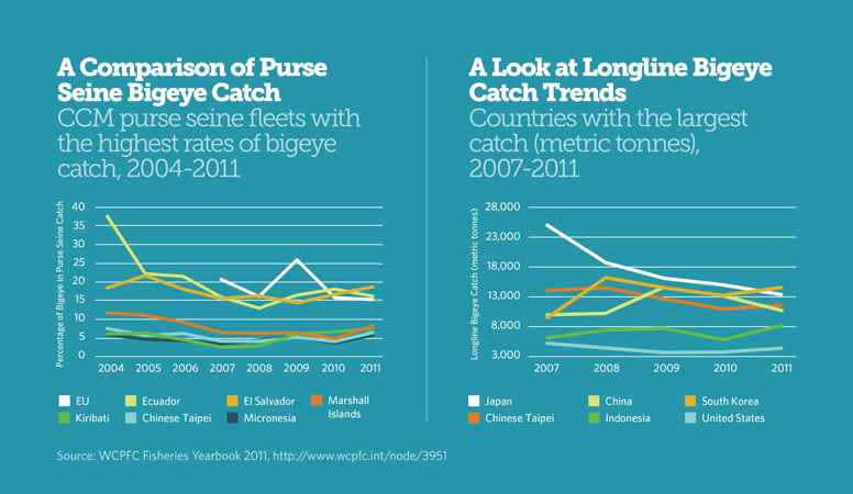 Bigeye Catch Trends