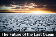 The Future of the Last Ocean