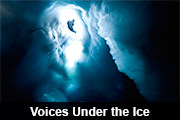 Voices under the ice