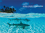 Global Shark Conservation