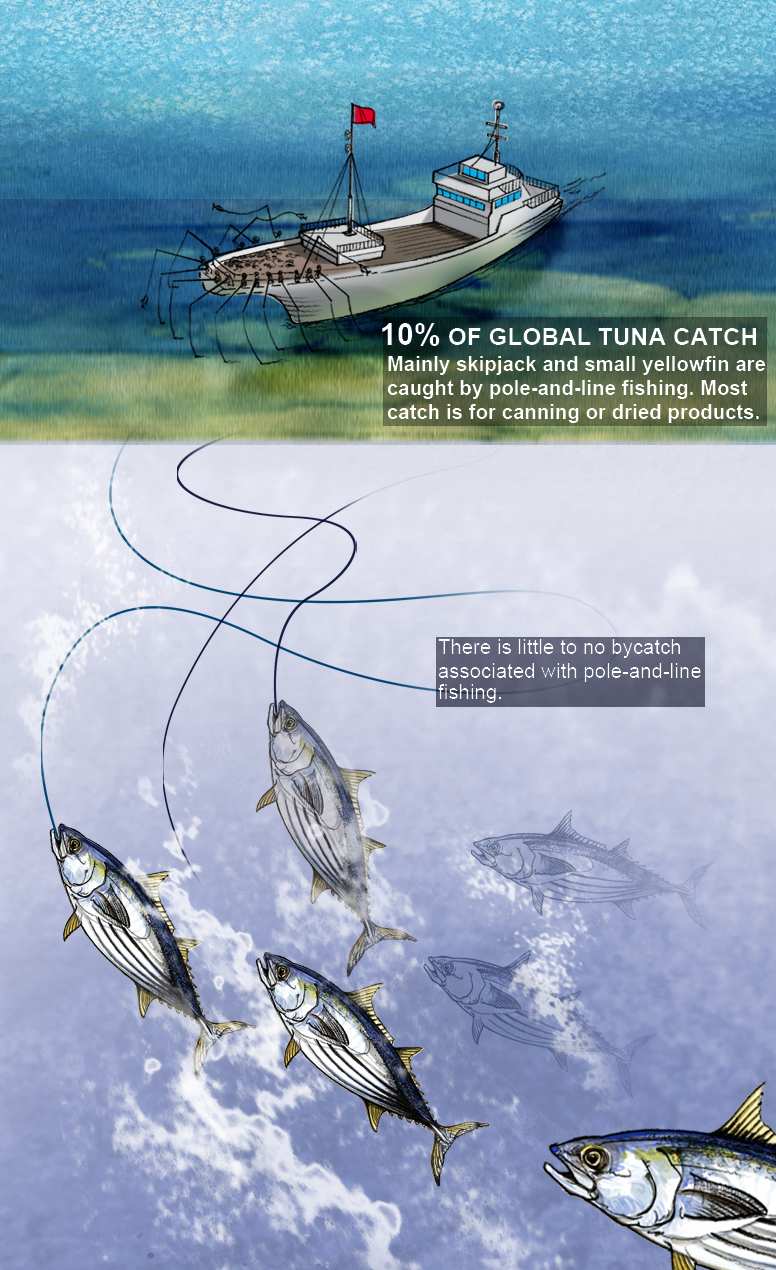 tuna-pole-and-line-test-1-lw