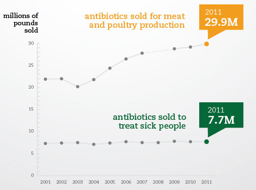 Infographic: Record High Antibiotic Sales for Meat and Poultry Production