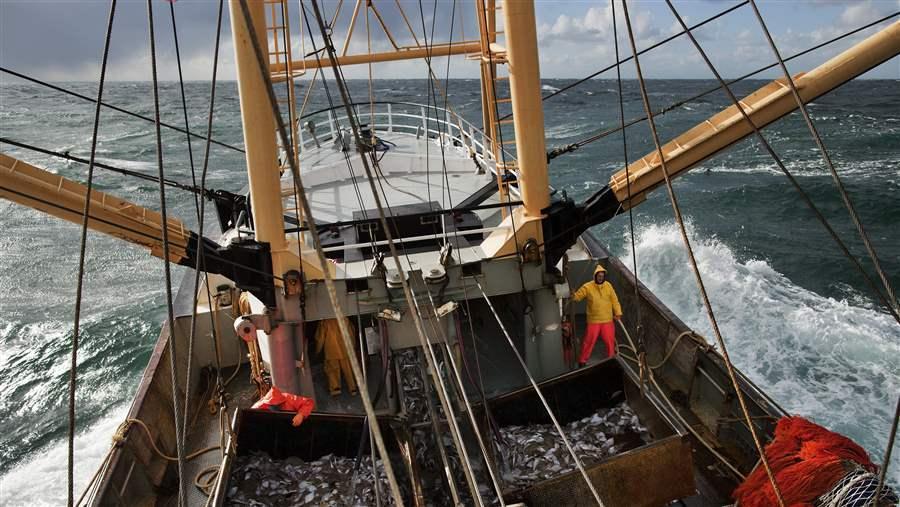 видео рыбалка на судне